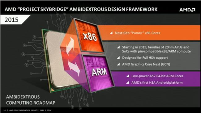 AMD-SoC_Skybridge