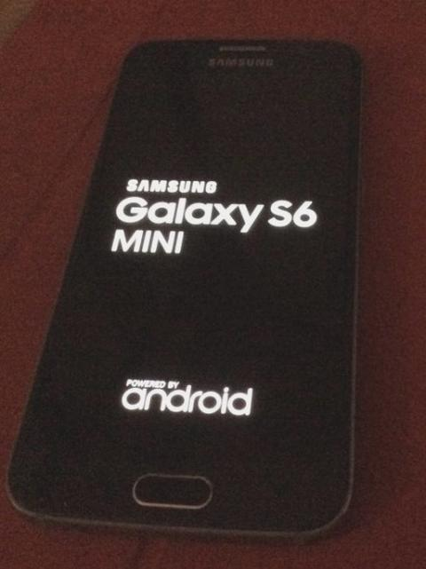 Samsung Galaxy S6 Mini.