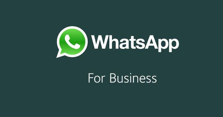 Toma de contacto con WhatsApp Business