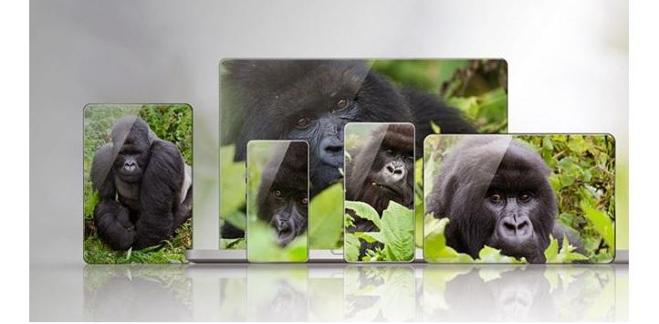 Gorilla Glass productos