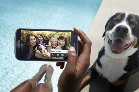 Samsung Galaxy S3 haciendo fotografía a una perro cerca de una piscina