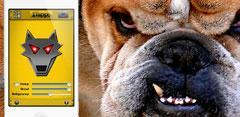 app itapguard perro guardian