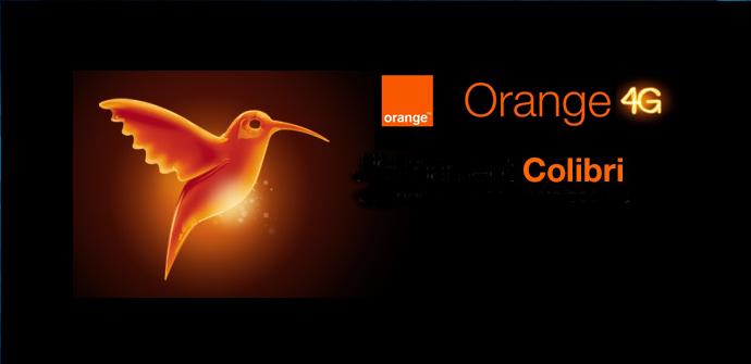 tarifa colibri orange