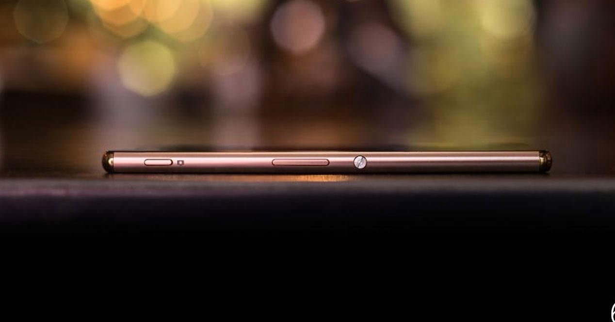 Perfil del Sony Xperia Z3+