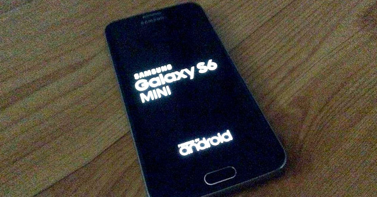 Samsung Galaxy S6 Mini.