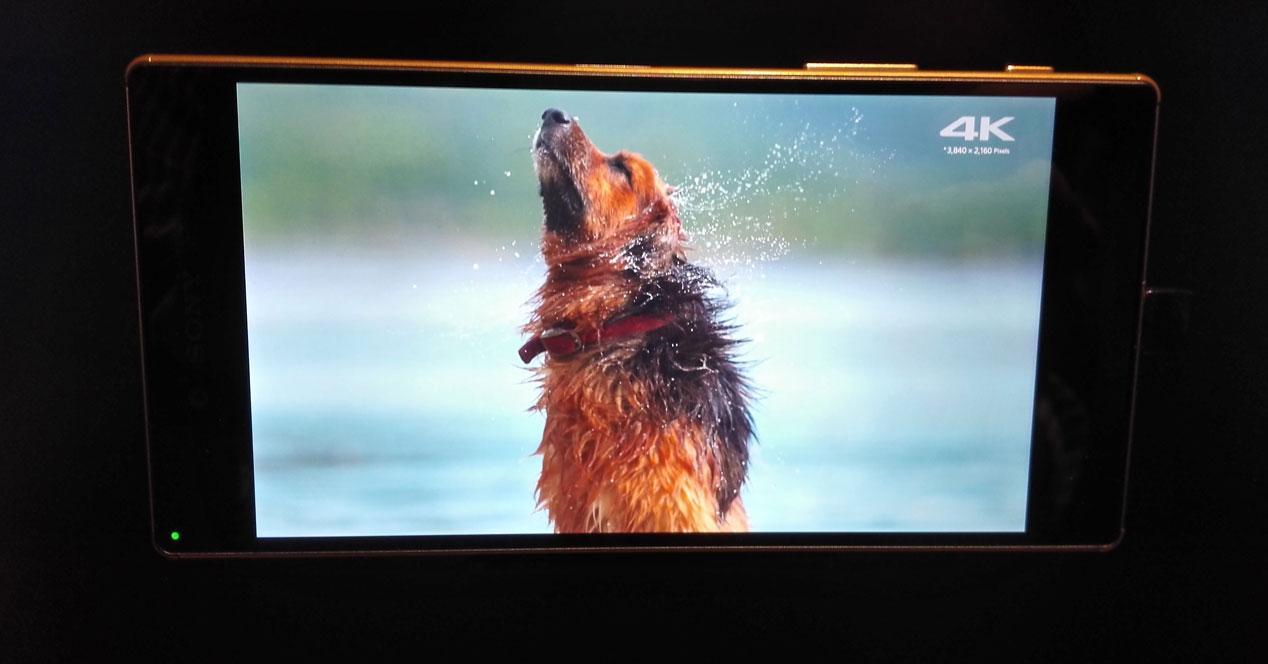 Sony Xperia Z5 Premium con vídeo 4K