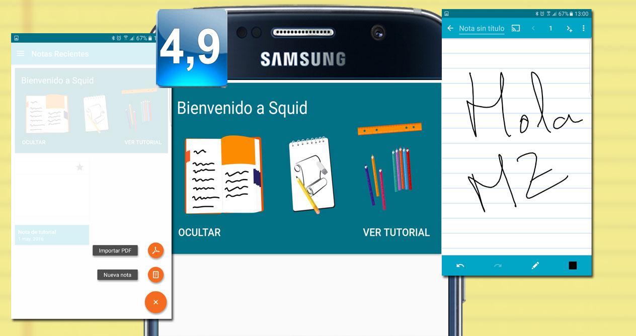 Montaje de la aplicación Squid