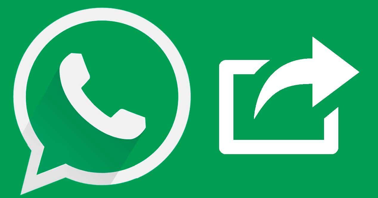 whatsapp icono reenviar