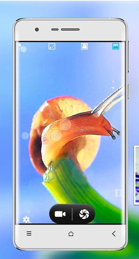Oukitel 4000 con pájaro en pantalla