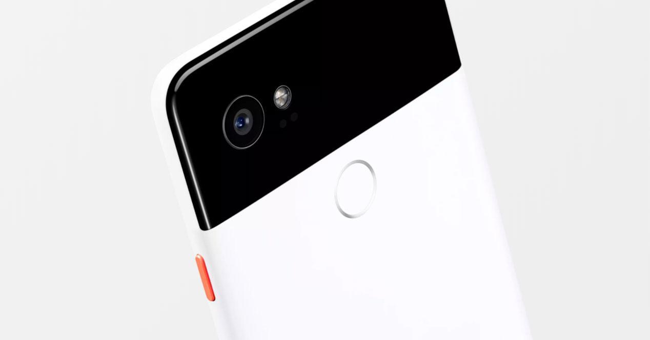 modo retrato del Google Pixel 2