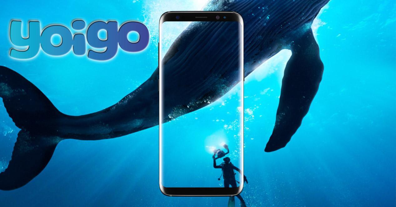 Oferta del Samsung Galaxy S8 en Yoigo