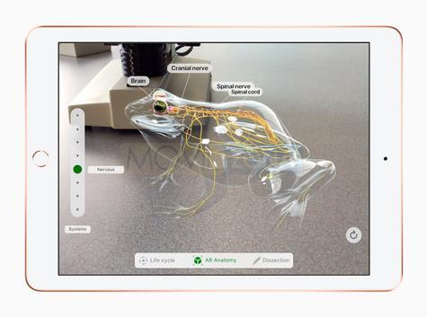 Apple iPad 9.7 con pantalla encendida