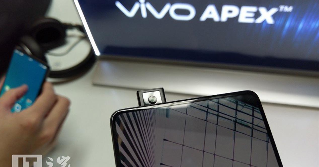 Display del Vivo Apex