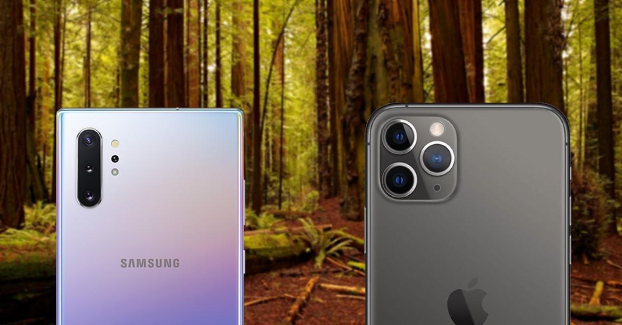 Galaxy Note 10 Plus vs iPhone 11 Pro Max fotos