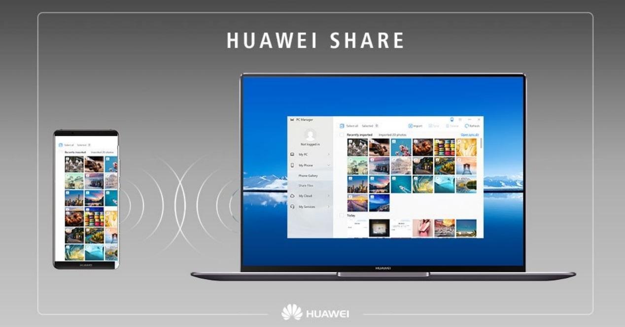 Huawei Share