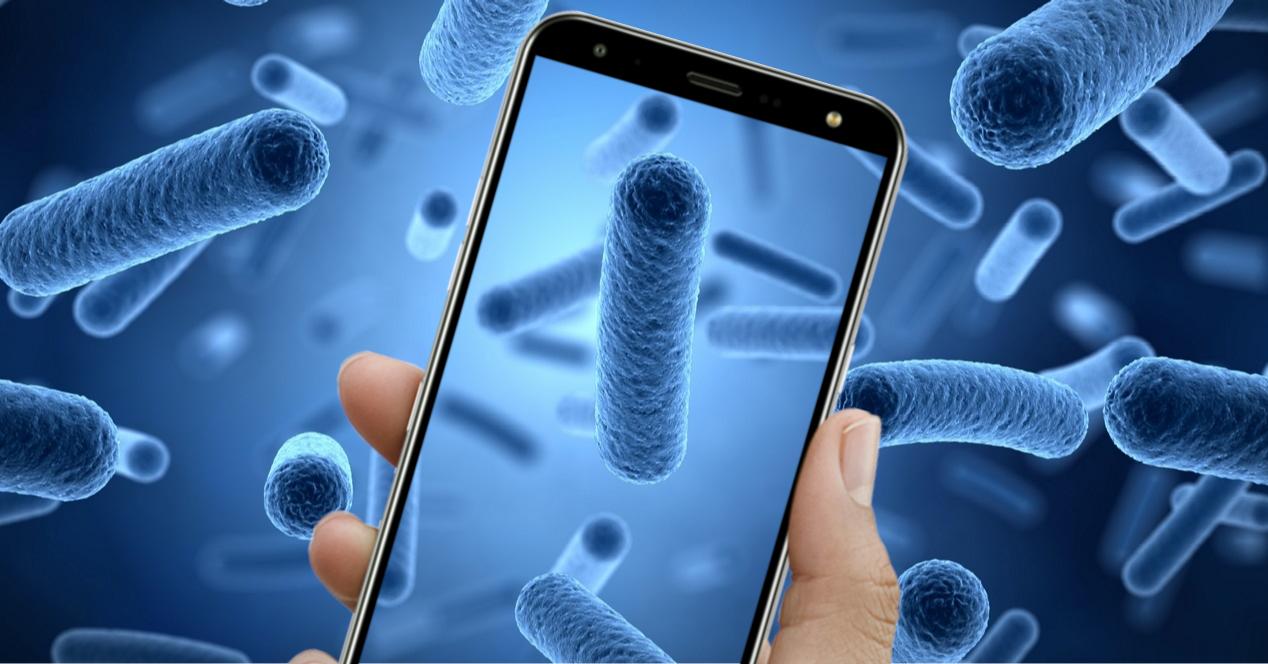 Bacterias en el móvil
