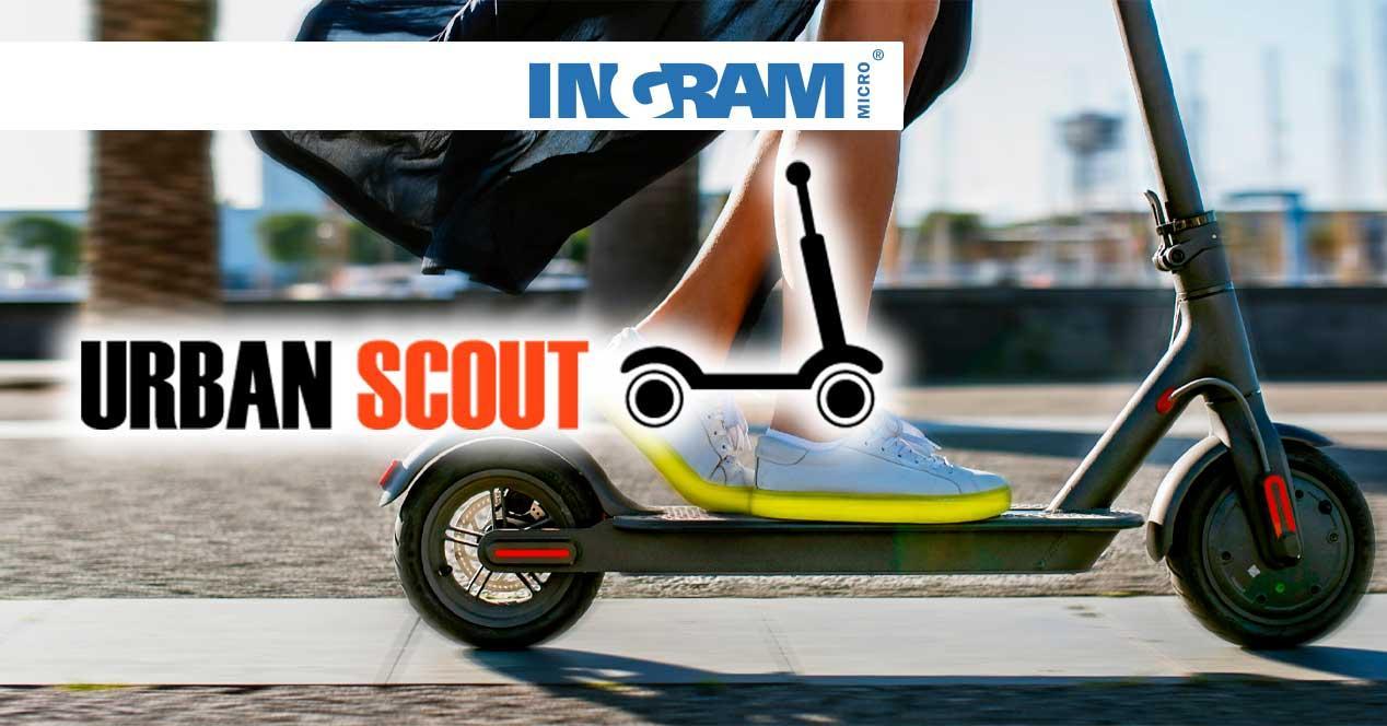 Ingram urban Scout
