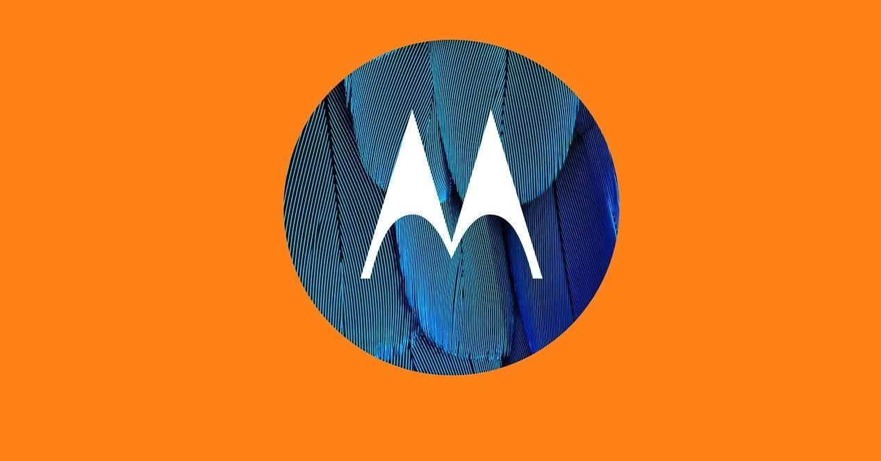 motorola logo naranja