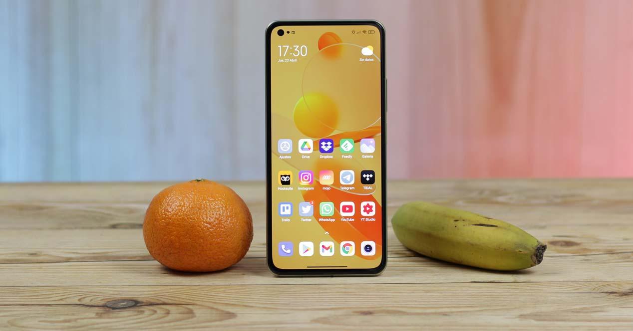 Xiaomi Mi 11 Lite 5G con frutas