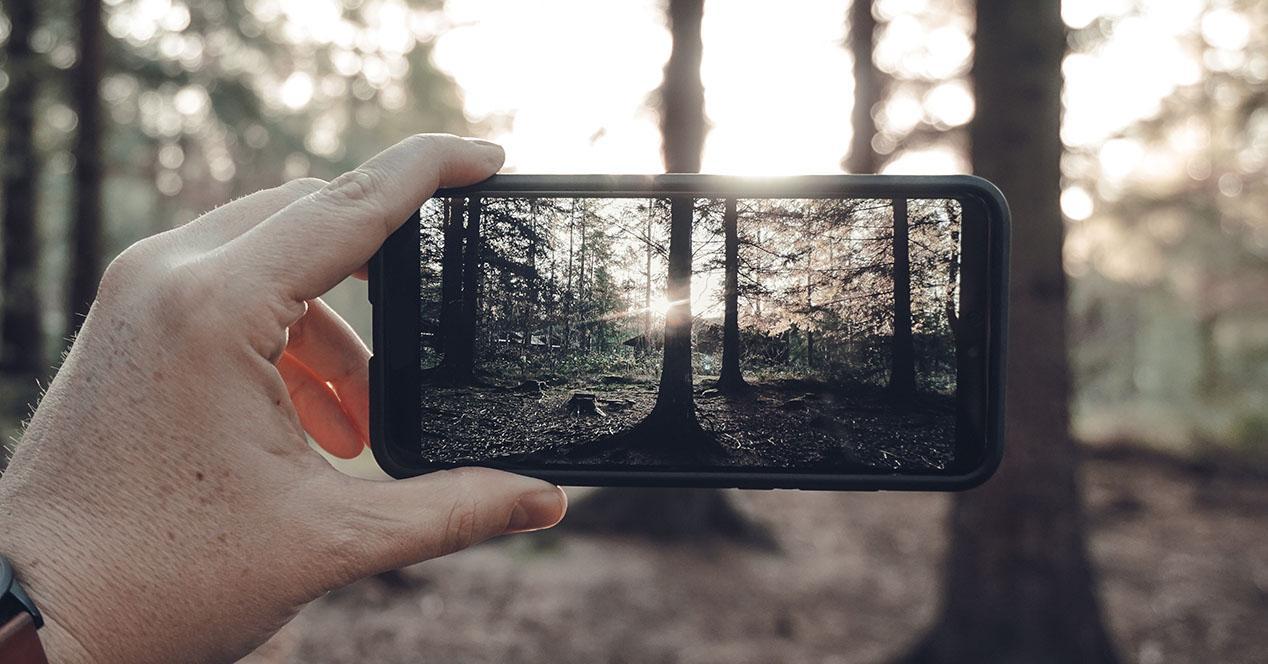 Sacando foto con el móvil